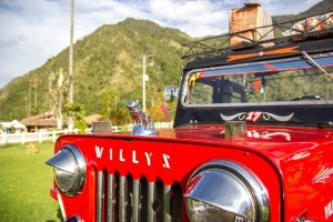Read more about the article Exploring The Beauty Of Cocora Valley