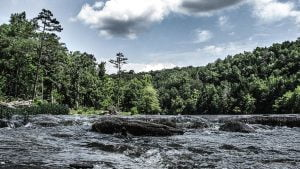 Read more about the article Best Beaches In Tennessee