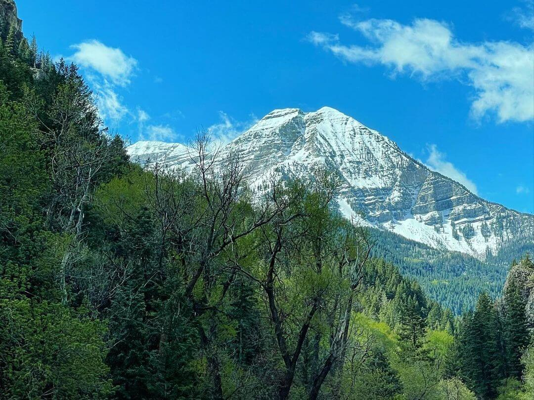 Read more about the article Fun Things To Do In Provo