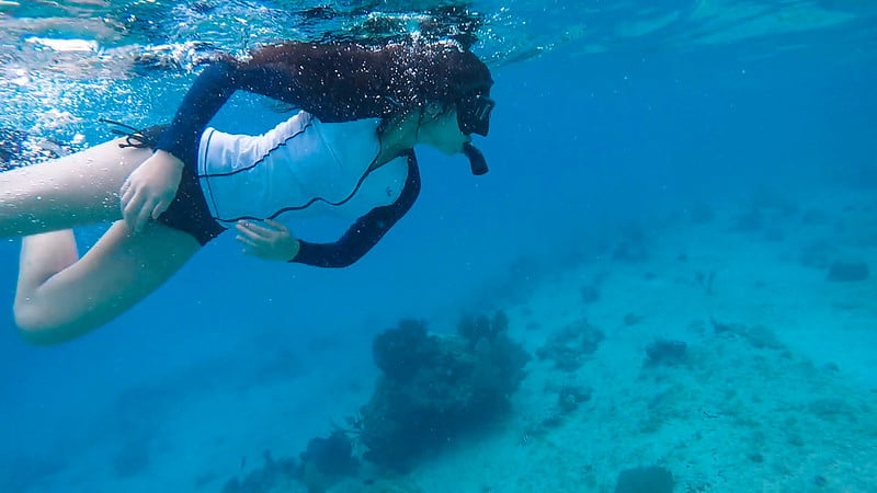 You are currently viewing How Does a Snorkel Work?